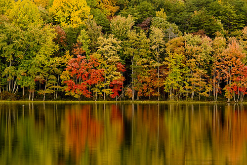 The Fall Foliage by ·BigGolf·