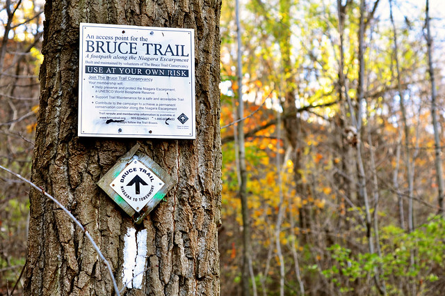 Bruce Trail runs through the Hamilton Escarpment Rail Trail