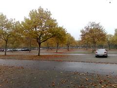 Physik Parkplatz im Herbst