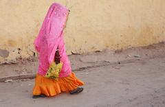 Rajasthan 1 [ December 2009 ]
