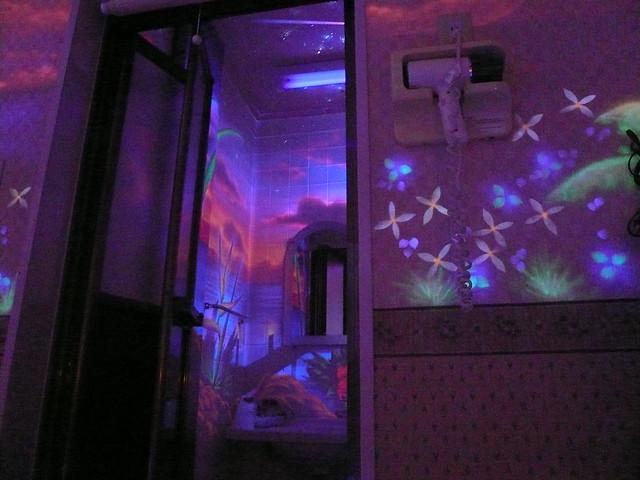 Black-light Toilet Art In Shibuya Love-hotel  Tokyo  Japan Jpg