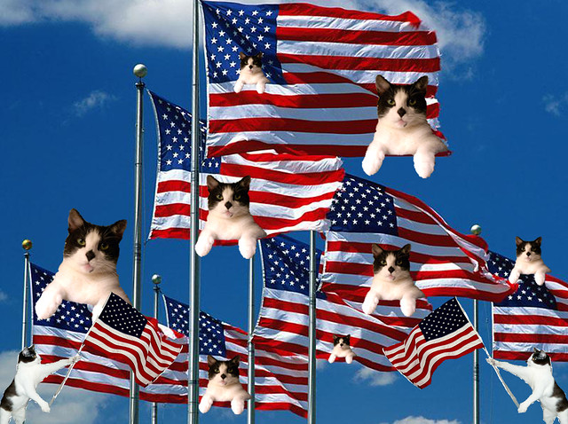 4th.Of.July.1776. Independence Day.      Flag.Binky