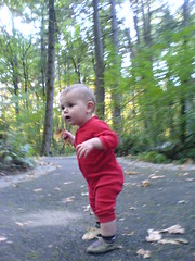 watching his big brother playing with big sticks   D…