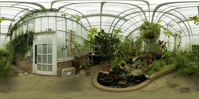 Wellesley College Greenhouse - 4
