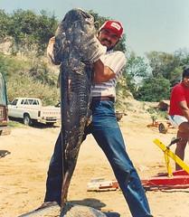 """""""SURUBÍ""""el gigante de los ríos y pesca variada , incluyendo al """" PEJERREY """" y el gran DELTA ARGENTINO.!!!"""