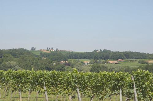 Gironde 19.jpg