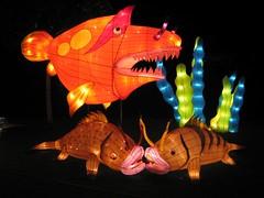 Lantern Festival @ Chinese Gardens