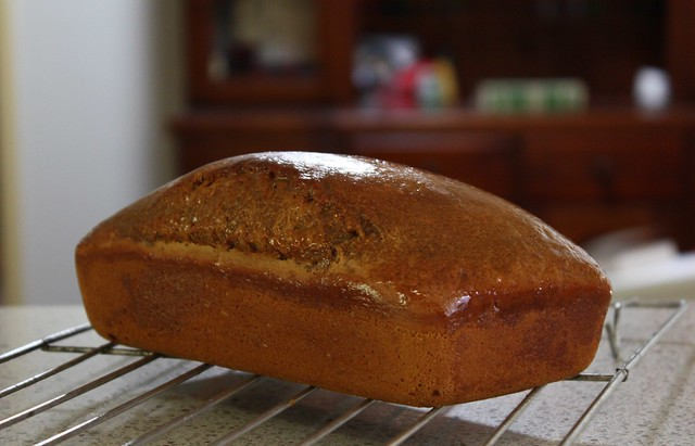 Guinness Bread with Molasses | Flickr - Photo Sharing!