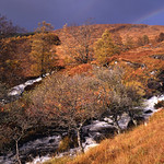 Scotland 2010 a