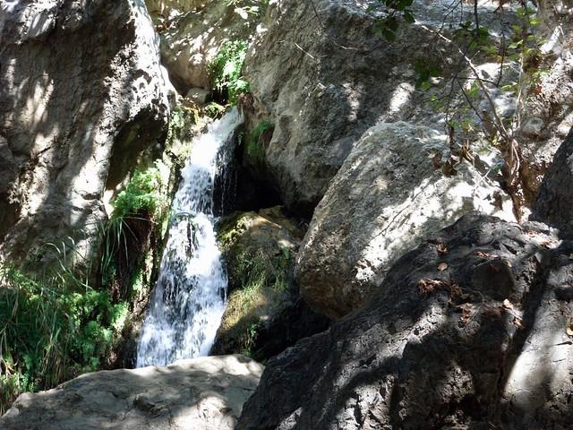 Solstice Cyn Trails 023
