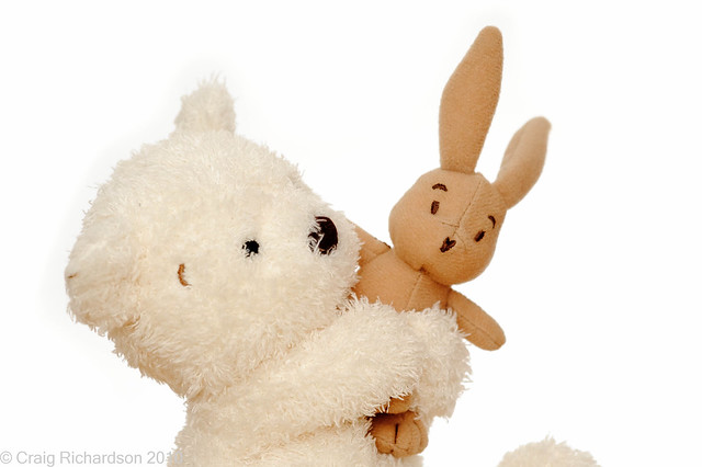 Day 321 bear and bunny flickr photo sharing