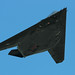 F-117A Flyby At Exercise 'Sentry Eagle' by planephotoman