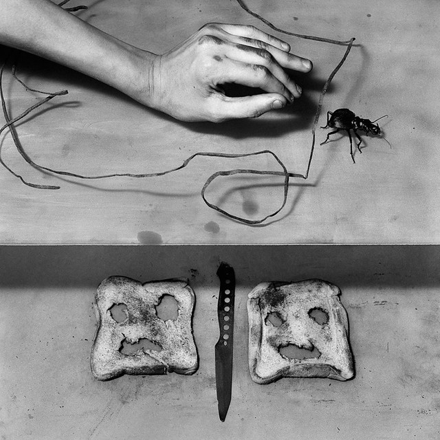 20x200 Edition: Culprit by Roger Ballen