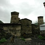 Svan Towers and Guard Dog - Svaneti, Georgia
