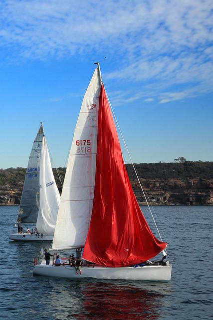 I luff sailing!