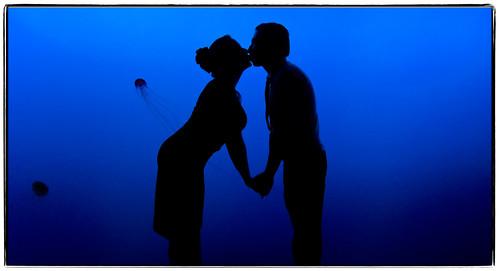 blue black love silhouette brooklyn coneyisland engagement kiss fuji august noflash 1755mmf28g gothamist topf100 2007 newyorkaquarium noahandallison s5pro