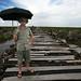 Kalimantan Field Trip: Selected Images