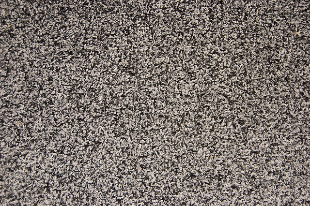 Indoor outdoor carpeting texture flickr photo sharing for Types of carpet texture