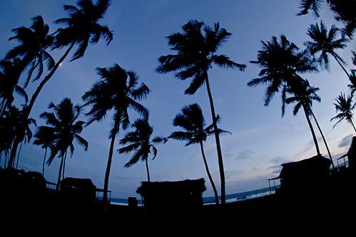 road blue sea mer canon benin 2010 cocotier ouidah cotonou mywinners routedespeches platinumphoto canon7d