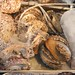 Small photo of Abalone