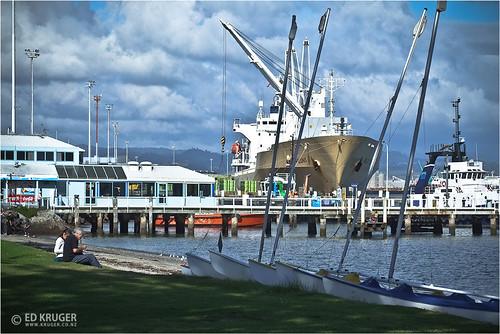 Pilot Bay and Port of Tauranga, New Zealand