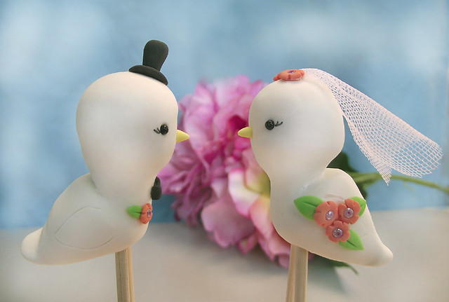 Same sex Love birds wedding