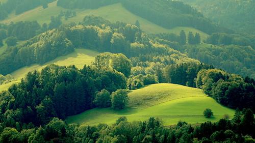 sun green nature landscape switzerland peaceful gruyere gettyimagessalq1