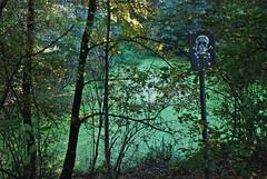 Le 2ème étang mais inaccessible ('t moeraske nature -Brussels)