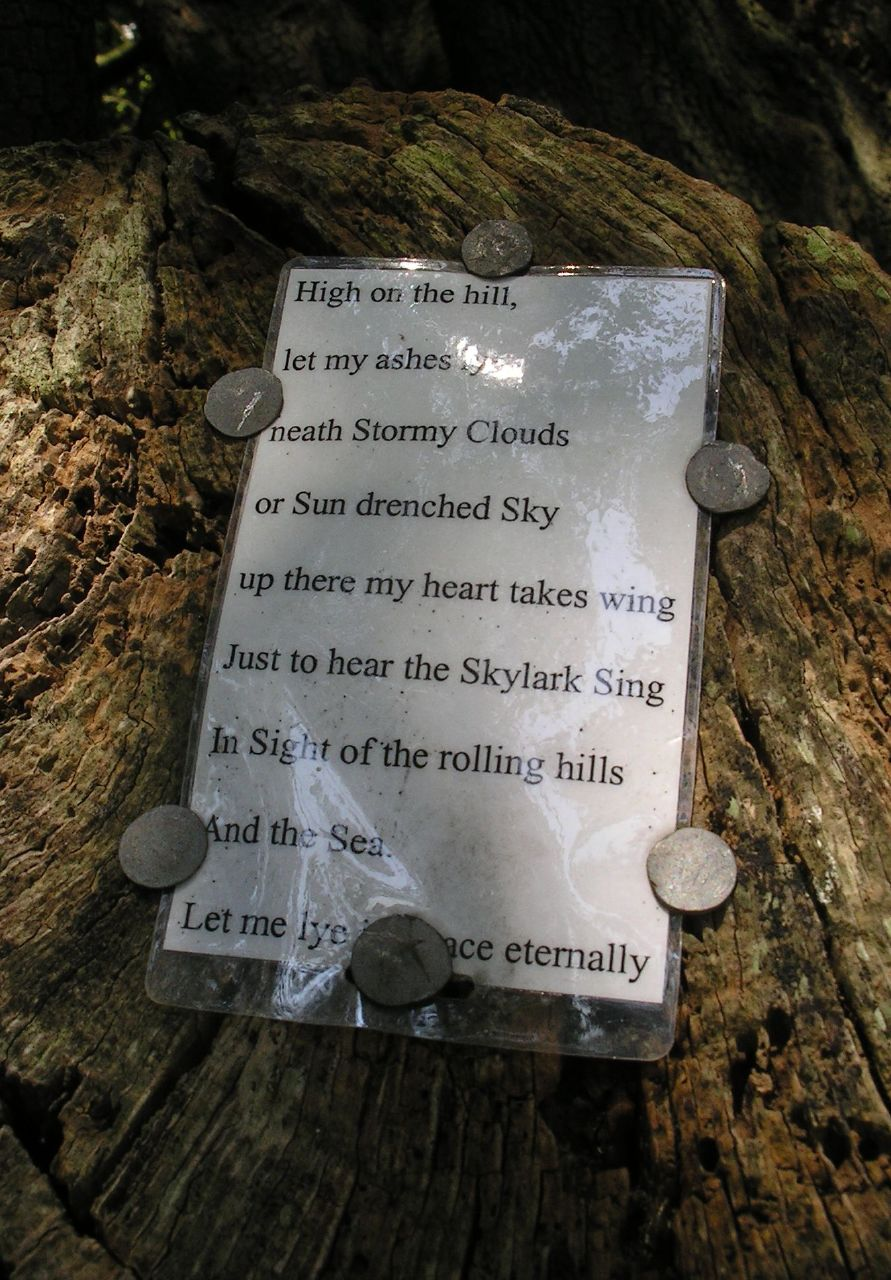 "Arundel to Amberley 1 Nailed to a tree in Arundel Park: ""High on the hill, let my ashes lye neath Stormy Clouds or Sun drenched Sky up there my heart takes wing Just to hear the Skylark Sing In Sight of the rolling hills And the Sea. Let me lye in peace eternally"" Evidently anonymous; an epitaph, perhaps? 11 August '07."