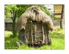 outdoor structure, straw, hay, hut, grass, tree, plant, trunk,