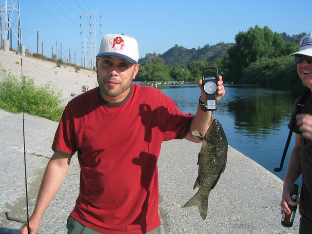 Los angeles river fishing in atwater village 37 flickr for Fishing in los angeles
