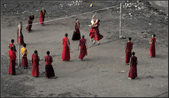 Monks playing Volley ball in the afternoon