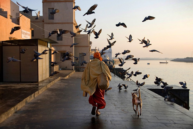 Sadhu and Dog - The Decisive Moment in Street Photography
