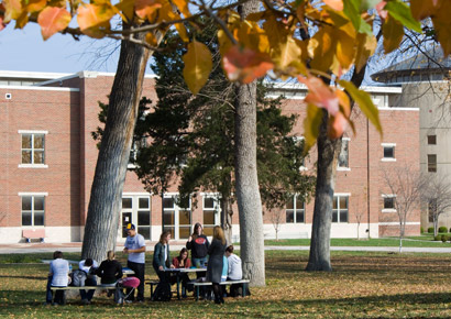 Newman University students studying outside