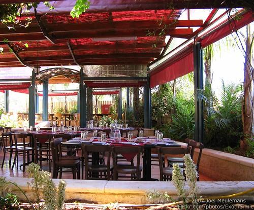 food plants garden table outside restaurant israel chairs dishes ישראל naura abughosh abugosh إسرائيل naurah אבוגוש מחוזירושלים أبغوش נצורה