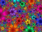 Flower Garden - Animation