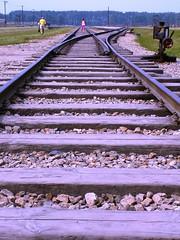 Auschwitz - Birkenau Concentration Camp - Going nowhere