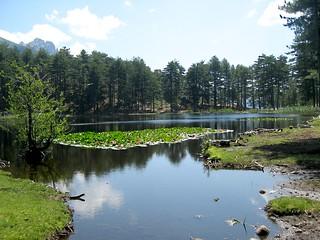 Le lac de Creno (Lavu A Crena) dans les Deux-Sorru