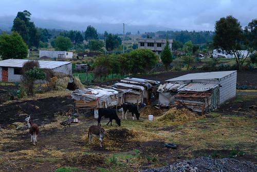 geotagged ecu chimborazo équateur tourdumonde haciendacasaredonda geo:lat=161769351 geo:lon=7876261711 ngcwn