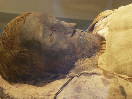 Real life Mummy Photos!!!