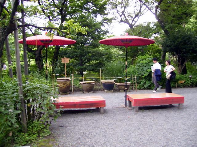 Asientos y sombrillas para ceremonia del t jard n for Sombrillas para jardin