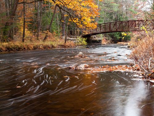 bridge autumn trees fall water forest river landscape woods stream nh brook