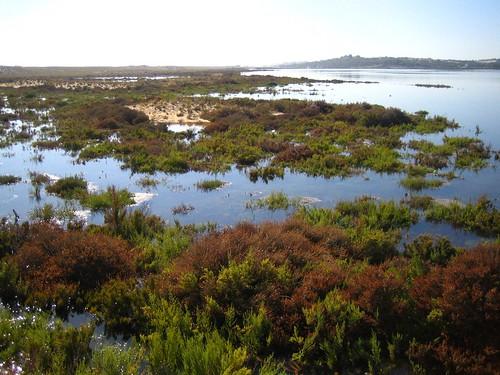 Quinta do Lago - Algarve - Portugal