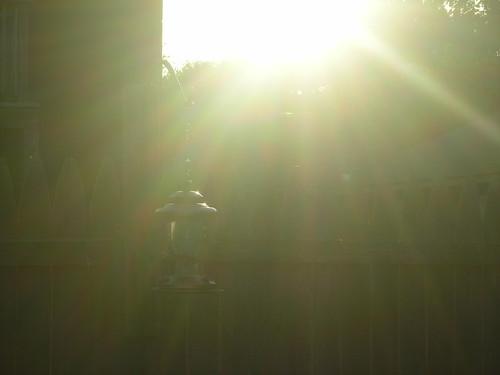 morning light sun sunrise outside