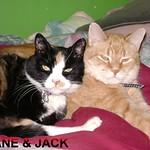 JANE & JACK