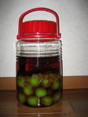 My plum liquor 2007 ver. (自作梅酒2007年版)