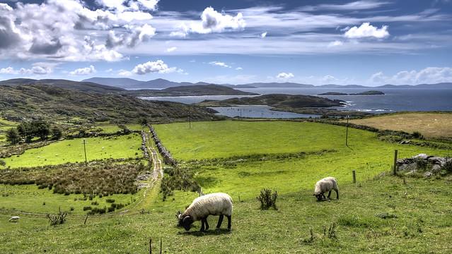 Irlanda traveldreams2014