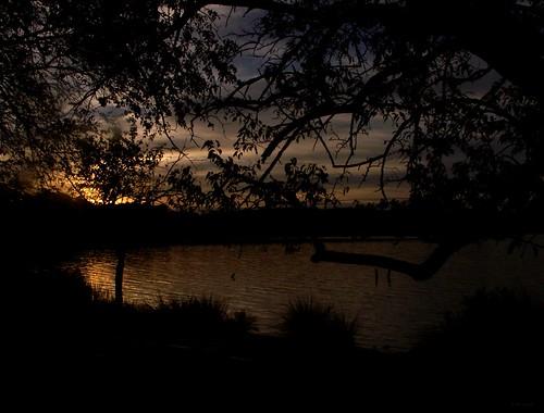 sun colour art film beauty analog 35mm dawn asahi pentax maryland serenity renewal thebeatles paulmccartney mesuper letitbe songoftheday saintmaryscounty bretonbay soligorf35452880mmzoommacrolens