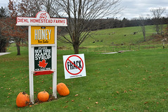 Fall Foliage, Farm and Fracking Tour