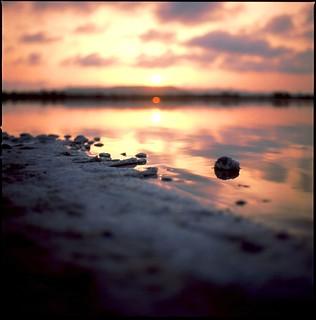 Fortia sunset